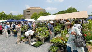 花と緑の即売会