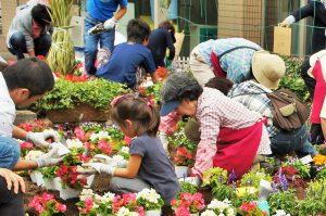 親子の花植え001
