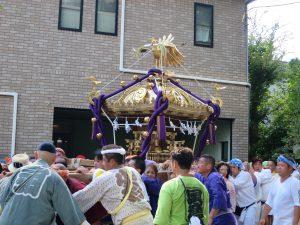 見事なお神輿が街を練り歩きます