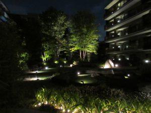 中庭のライトアップ